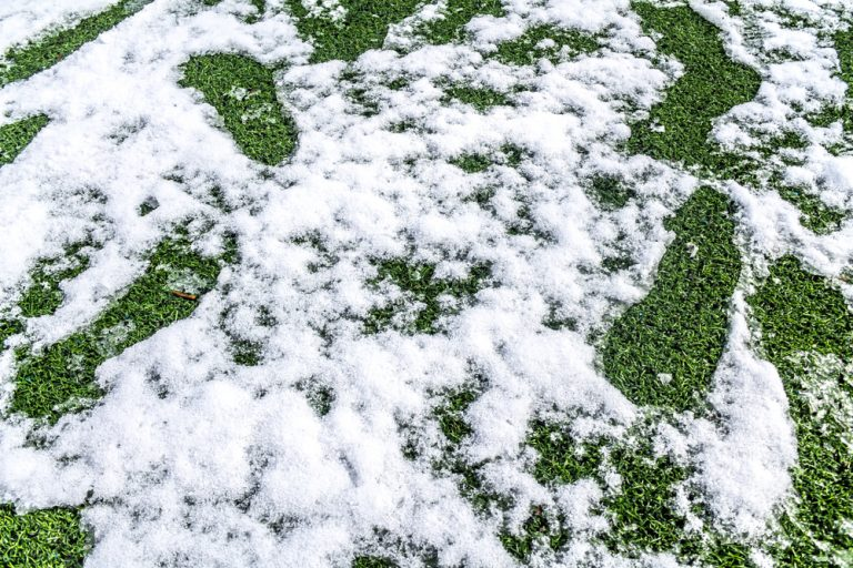 Artificial Grass in Autumn and Winter