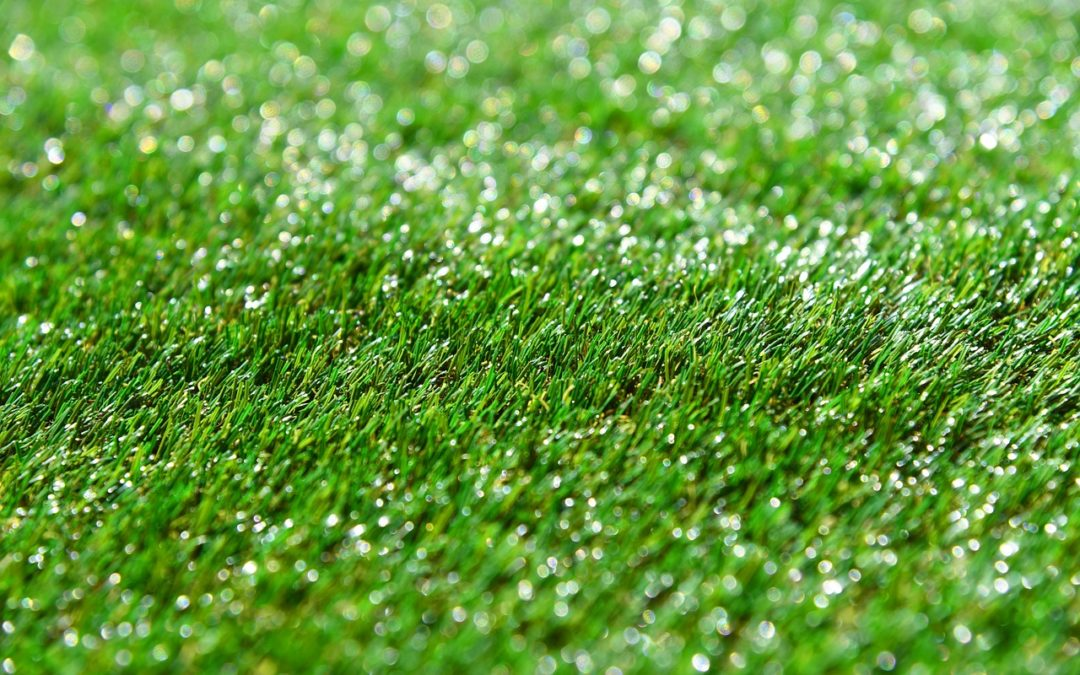 Useful Lawn Year-Round with Synthetic Grass